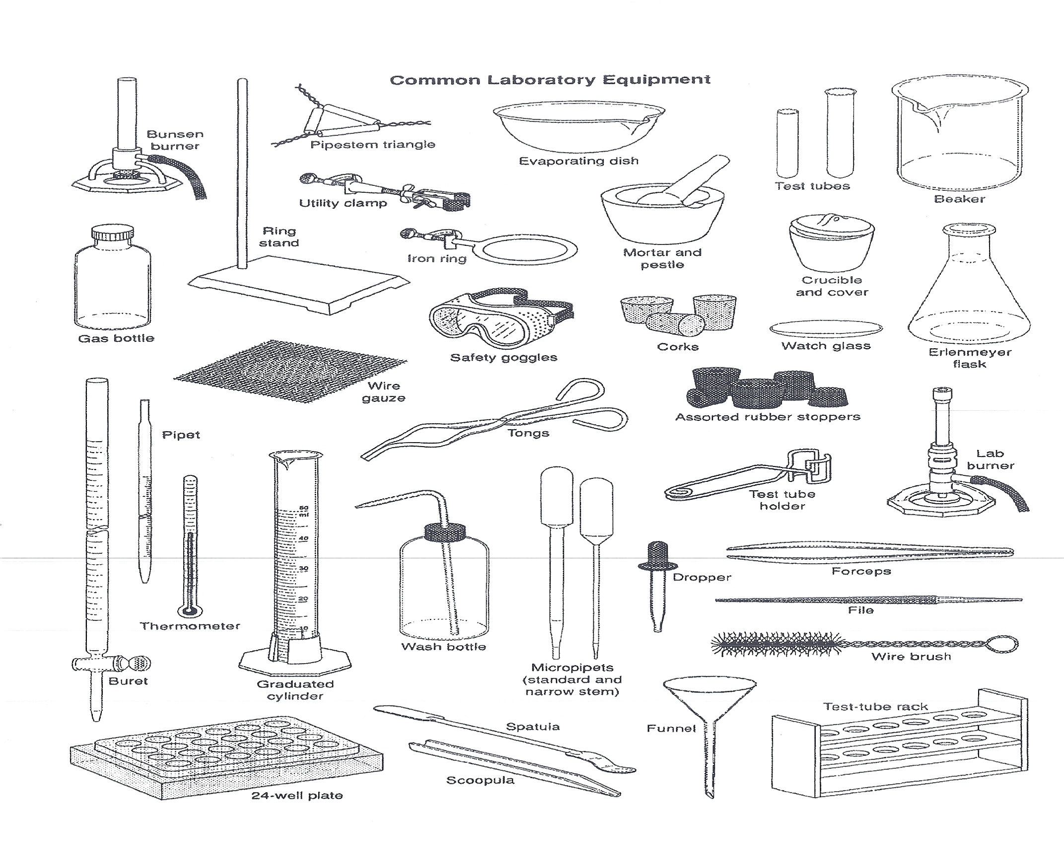 Printables Laboratory Equipment Worksheet worksheet lab equipment abitlikethis equipment